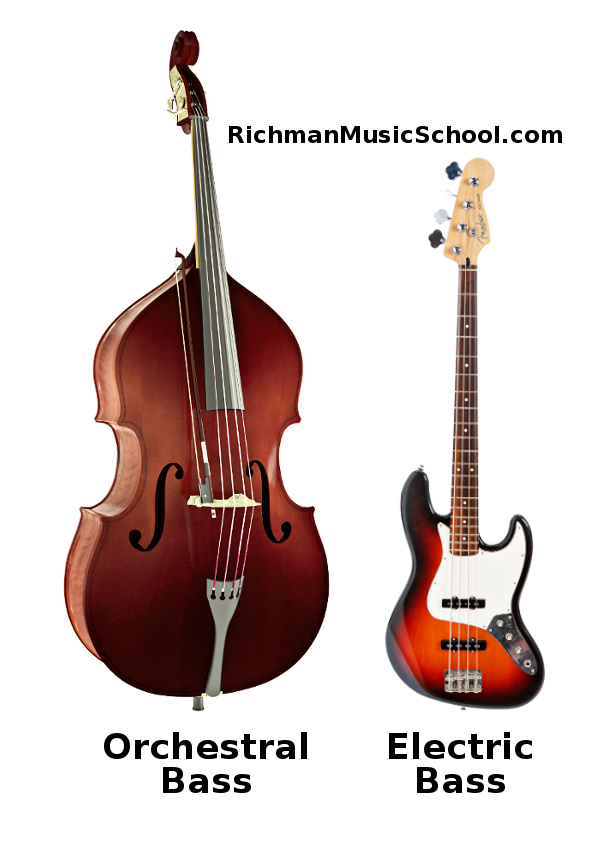 Orchestral Bass and Electric Bass comparison